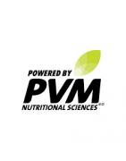 PVM :